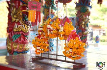 LC_Fujian35F1.6(13)