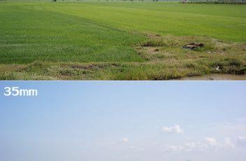 LC_compare_25&35mm(1)