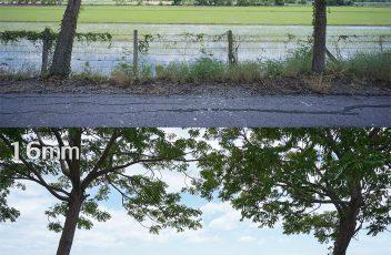 LC_compare_12&16mm